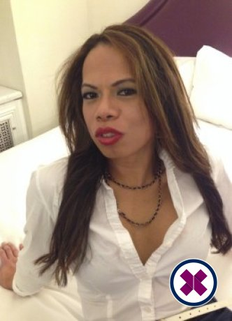 Amanda TS is a very popular Thai Escort in Westminster