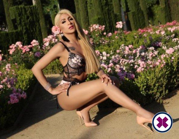 Katisha Lee TS is een super sexy Colombian Escort in Westminster
