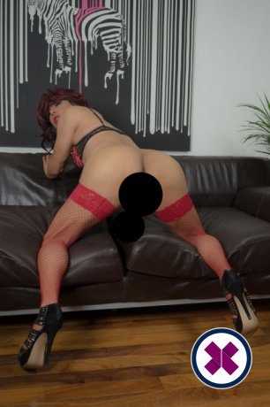 Meet the beautiful Tgirl Candy in   with just one phone call