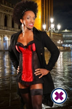 TV Kate Love is a hot and horny Brazilian Escort from Westminster