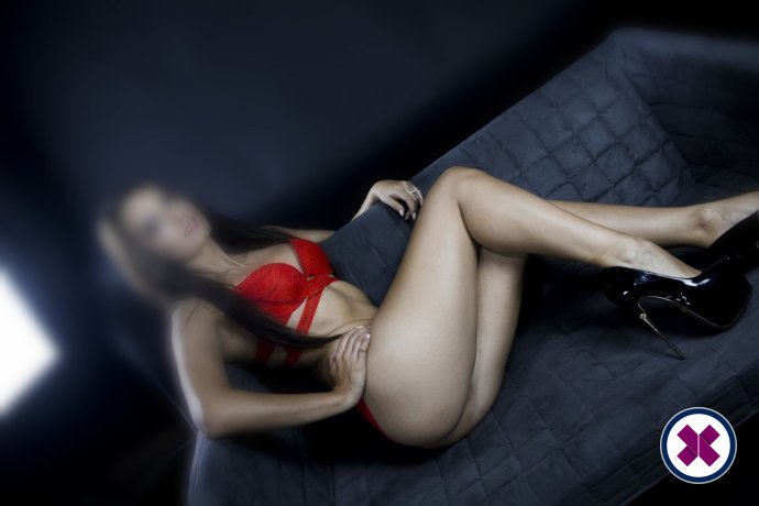 Amily is a high class Estonian Escort London
